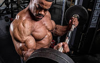 Top 5 Exercises For Building Biceps