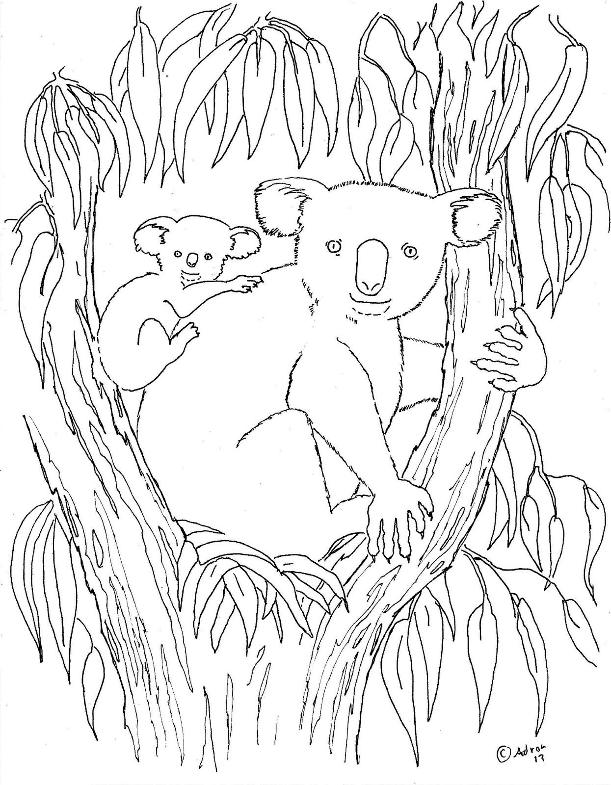 coloring pages for kids by mr adron koala and baby print and