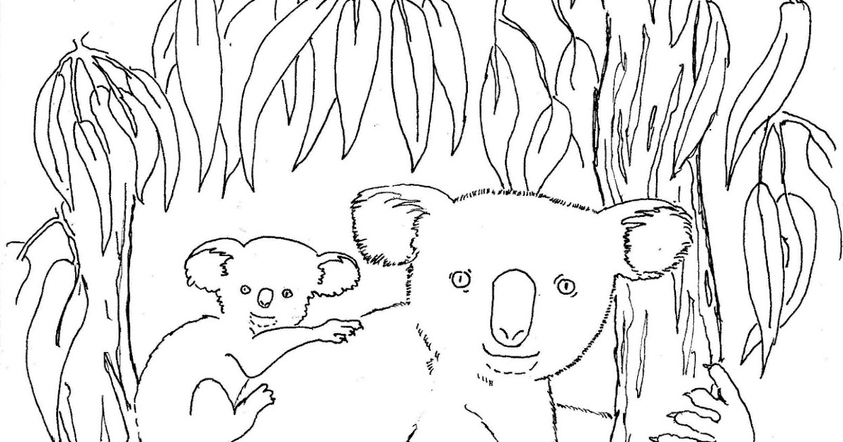 Coloring pages for kids by mr adron koala and baby print for Koalas coloring pages