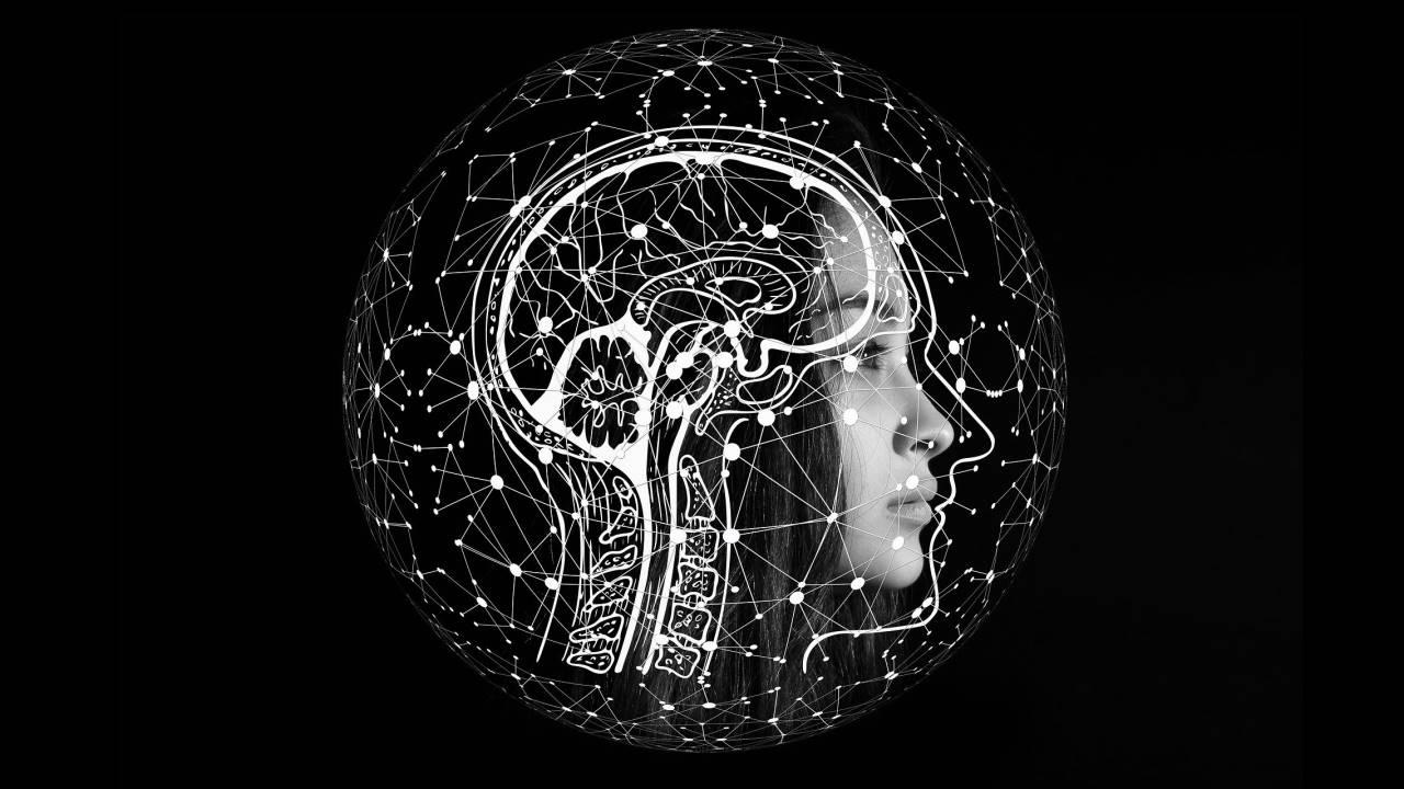 8 Tipe Kecerdasan, Kamu Termasuk yang Mana?