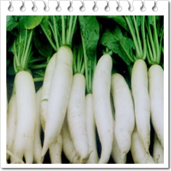 Manfaat buah lobak putih untuk kesehatan tubuh