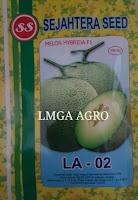 benih melon hibrida, menanam melon, jual benih melon, lmga agro