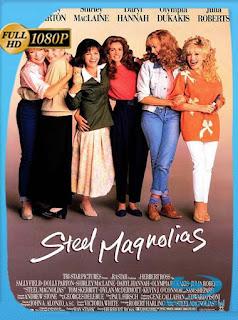 Magnolias de Acero (1989) HD [1080p] Latino [GoogleDrive] PGD