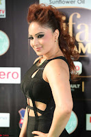Nikesha Patel in Beautiful Figure Hugging Black Dress  at IIFA Utsavam Awards 2017  Day 2 at  13.JPG