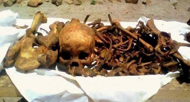 Mangongkal Holi (Pemindahan Tulang-Belulang), Tradisi Masyarakat Batak Toba  Sarat Nilai