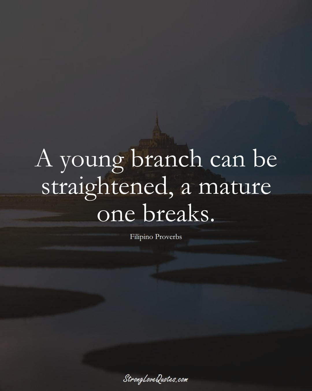 A young branch can be straightened, a mature one breaks. (Filipino Sayings);  #AsianSayings