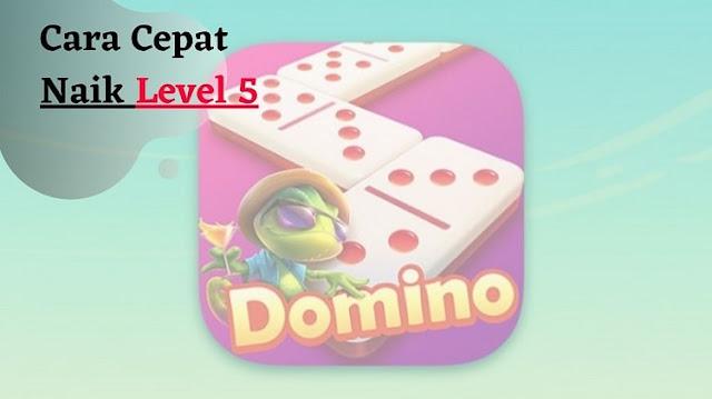 Cara Cepat Naik Level 5 Higgs Domino Island