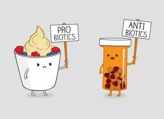 antibiotik dan probiotik, apa itu probiotik, kenapa anda perlu probiotik