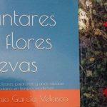 reseña del poemario de Antonio García Velasco, por Ana Herrera Barba