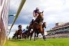 13 Temmuz 2020 Pazartesi Şanlıurfa Altılı Tahminleri | At Yarışı Tahminleri
