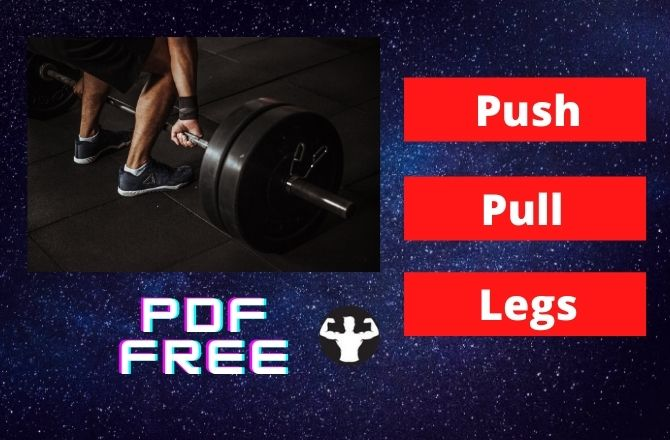 Download Push Pull Legs Split Schedule