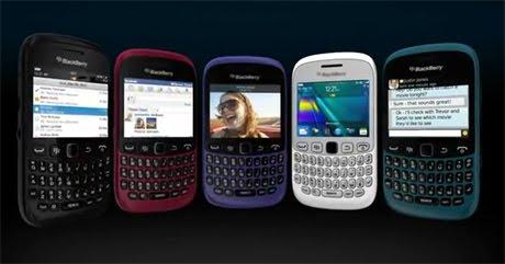 Blackberry Termurah