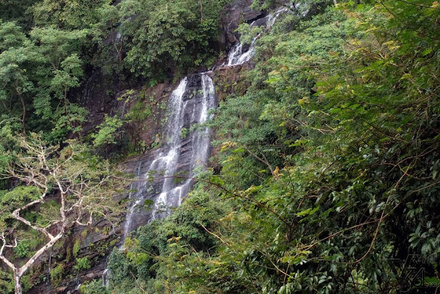 Small waterfalls on the way to the base of jog falls