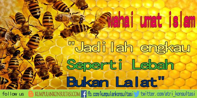 Jadilah engkau Seperti Lebah Bukan Lalat