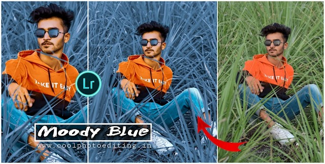 moody blue Lightroom presets Free Download