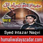 http://www.humaliwalayazadar.com/2015/10/syed-intazar-naqvi-nohay-2016.html