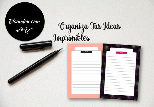 organiza-tus-ideas