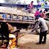 দিনাজপুরের বিরামপুরে ইউপি চেয়ারম্যানের চেয়ার পুড়ে দিলেন পরিষদ সদস্য