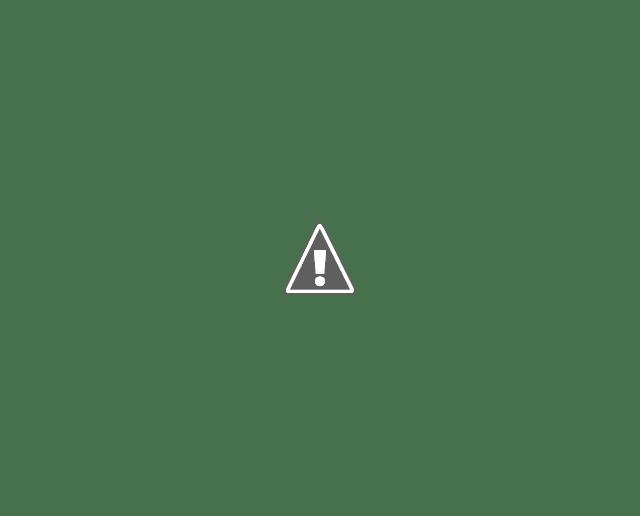 Le taux de clics est inférieur à la moyenne pour toutes les positions lorsque le haut de la page de résultats est plein d'annonces Google.