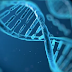 US Spy Agencies Want to Store Data on DNA Computers