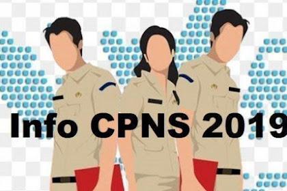 Formasi Lengkap CPNS 2019, Kementerian, Lembaga, Provinsi, Pemkot,Pemda, Seluruh Indonesia