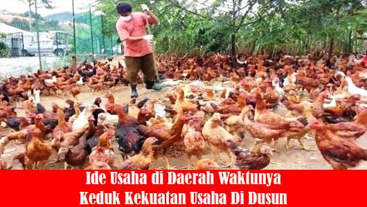 Ide Usaha di Daerah Waktunya Keduk Kekuatan Usaha Di Dusun