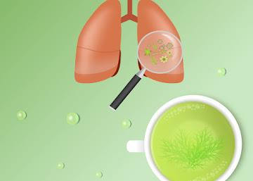 Receita Contra Bronquite: Chá de Folha de Anis