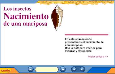 http://www.ceiploreto.es/sugerencias/varios/mariposa2.swf