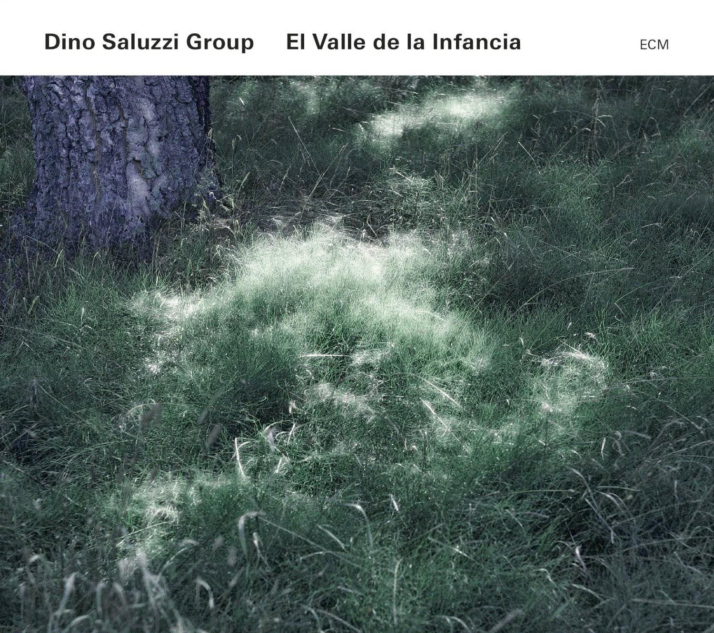 Cabeza De Moog Dino Saluzzi Group El Valle De La Infancia 2014