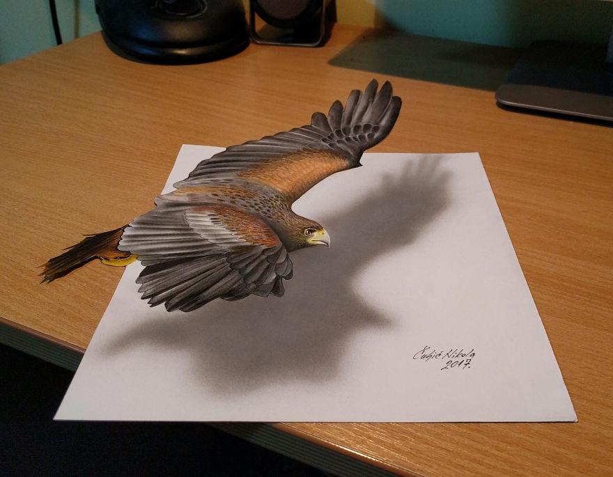 02-Eagle-Nikola-Čuljić-2D-Anamorphic-Drawings-that-Look-3D-www-designstack-co