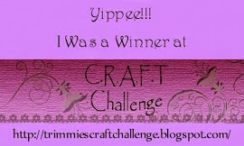 http://trimmiescraftchallenge.blogspot.in/2012/10/winners-and-top3-for-challenge-174-make.html