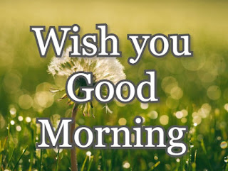 best good morning images, new good morning images, gud morning images, HD good morning pictures, latest gm images for facebook, new good morning images with wishes, good morning photos, suprabhat images, Good Morning Status