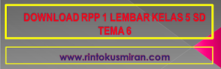 DOWNLOAD RPP 1 LEMBAR KELAS 5 SD TEMA 6