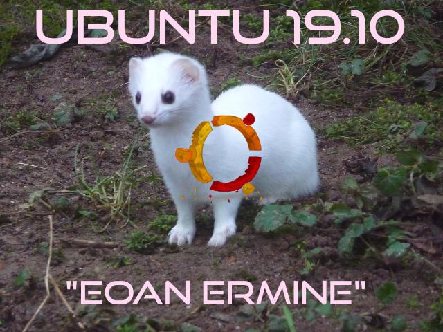 L'ermellino presente nella prossima versione Ubuntu 19.10, si chiamerà Eoan Ermine.
