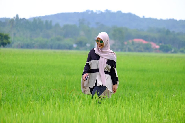 Tapak tanaman padi milik Koperasi Petani Ketara Besut Berhad (KOPETA) di Daerah Besut