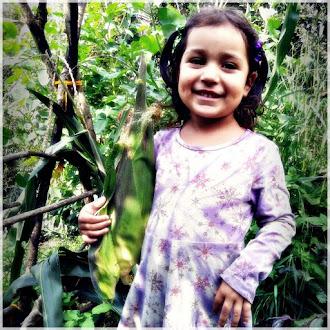 Die Landwirtschaft mit Kindern