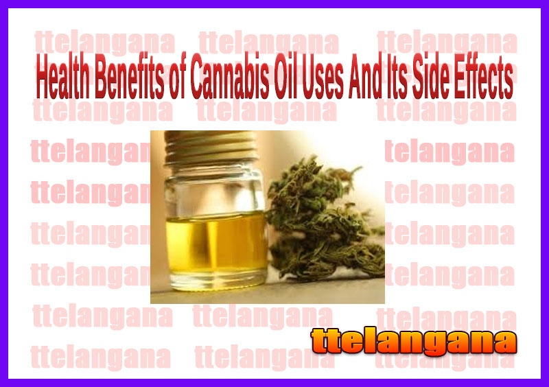 Health Benefits of Cannabis Oil Uses And Its Side Effects