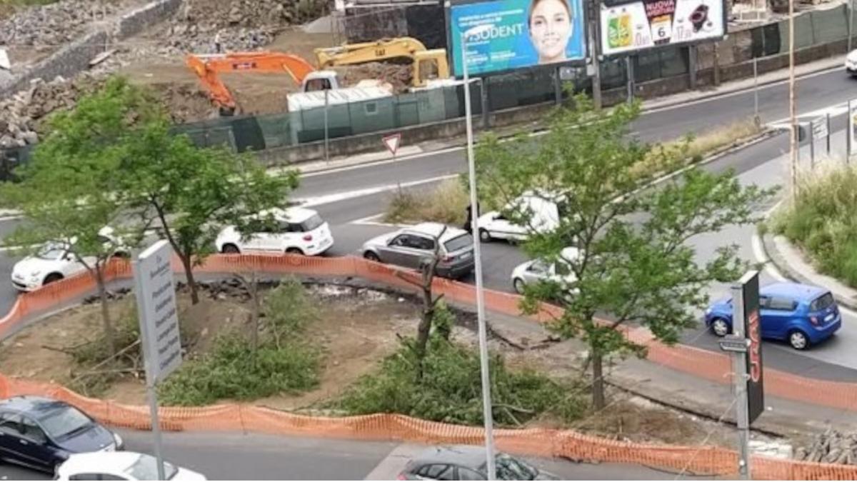 BRT alberi rimossi zona Fasano