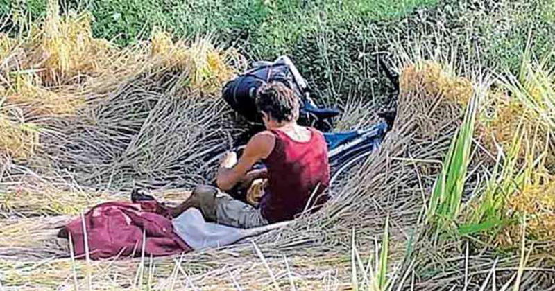 This is how the Frenchman, who loved the view of the paddy fields, got a job,www.thekeralatimes.com