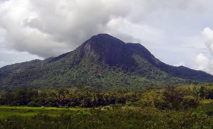 80+ Gambar Alam Kalimantan Kekinian