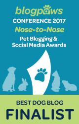 Best Dog Blog Finalist 2017