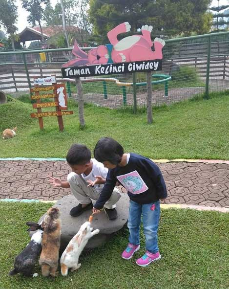 Taman Kelinci Ciwidey, Destinasi Baru di Bandung Yang Menarik