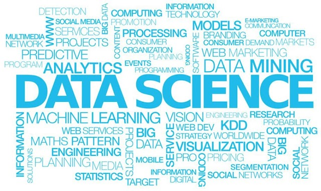 data science job in India: 4 types of data scientists