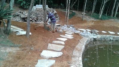 Bizzarri trabalhando, iniciando o caminho de pedra em volta do lago, sendo caminho com pedra cacão de São Tomé com junta de grama e no lago os muros de pedra moledo.