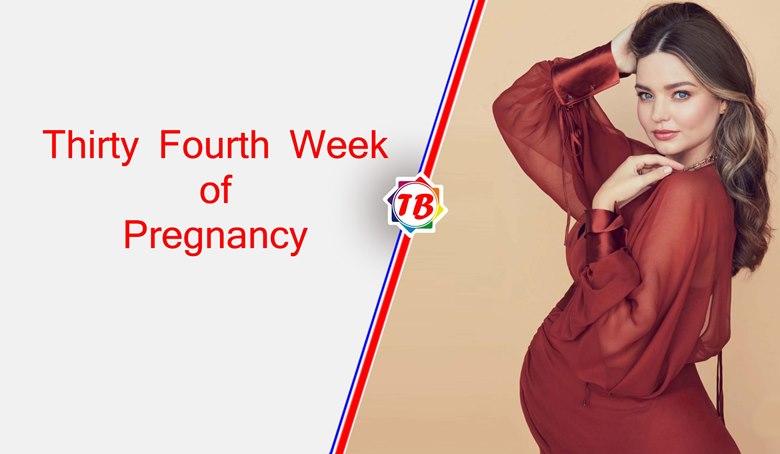 Thirty Fourth Week of Pregnancy