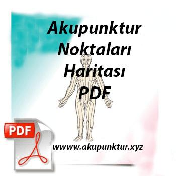 Akupunktur Noktaları Haritası Pdf