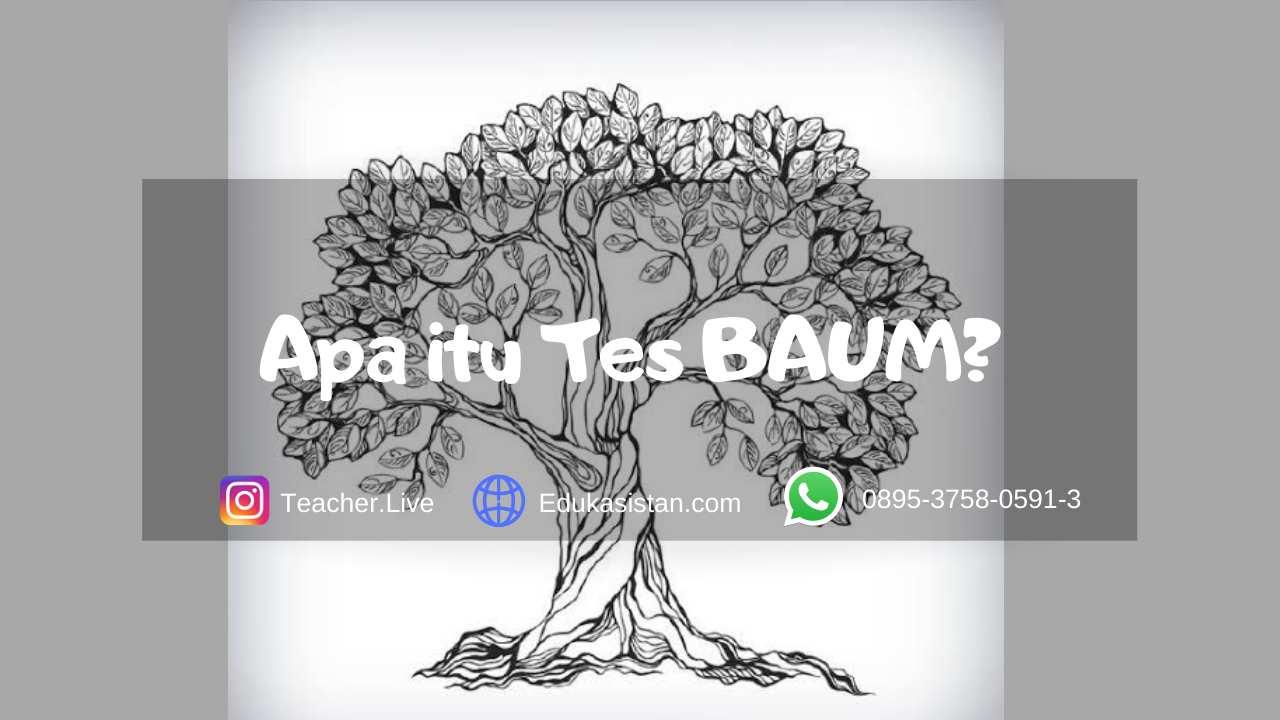 Tes Baum