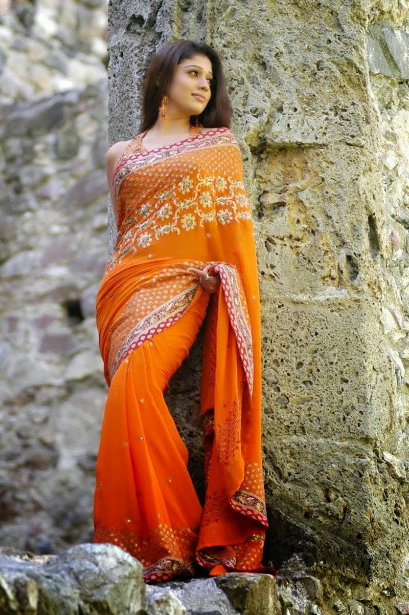 Nayanthara Hot Saree Photos  Nayanthara Photo Gallery -6834