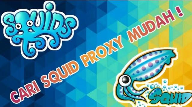 Cara Mencari Squid Proxy