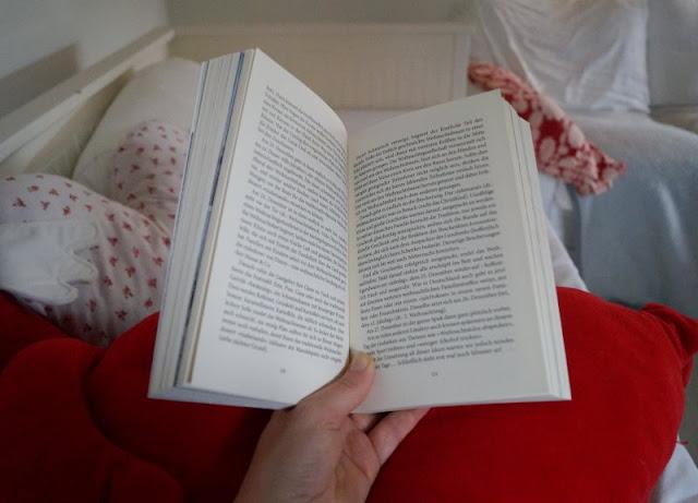 Maritta G. Demuth: 111 Gründe, Dänemark zu lieben Schwarzkopf Verlag Rezension